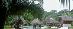 Hotel restaurant de plantage commewijne - zwembad