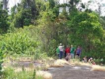 Jungle Resort Pingpe - In de schaduw - de gids vertelt...