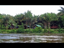 Jungle Resort Pingpe - aanzicht