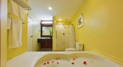 Courtyard Marriott King Whirpool Guest Room Bathroom