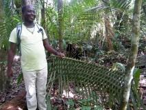 Jungle Resort Pingpe - Chapeau aan het woord