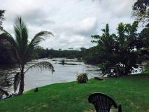 Knini Paati uitzicht op rivier