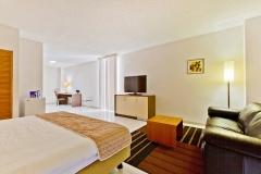 Queens Hotel - Royal Executive (2)