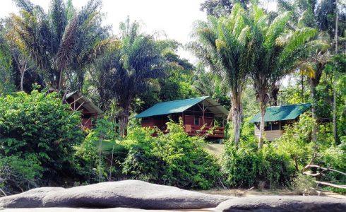 Jungle Resort Pingpe (4 or 5-days)