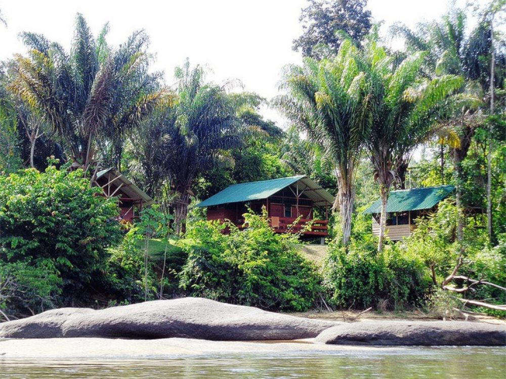 Jungle Resort Pingpe (4 or 5-days)