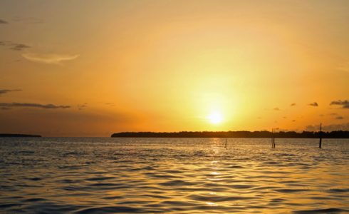 Sunset, Dolphins and caymans
