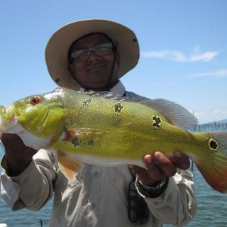 Fishing tour: Lake