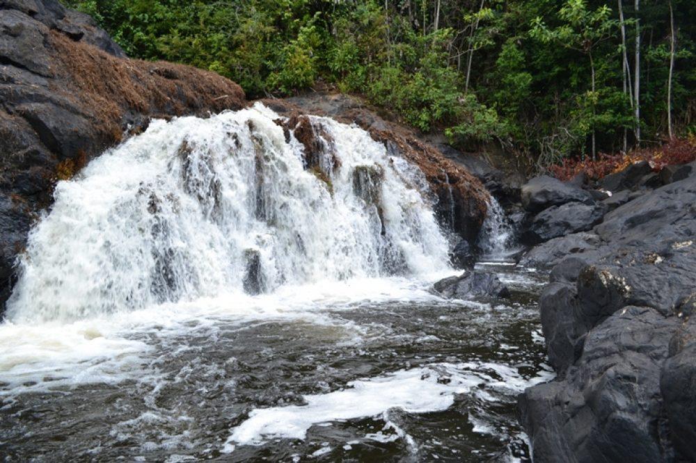 West-Suriname (6-days)