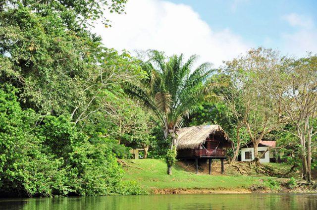 Danpaati River Lodge Multi cabin