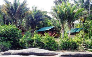 Jungle Resort Pingpe (4 of 5-dgn)