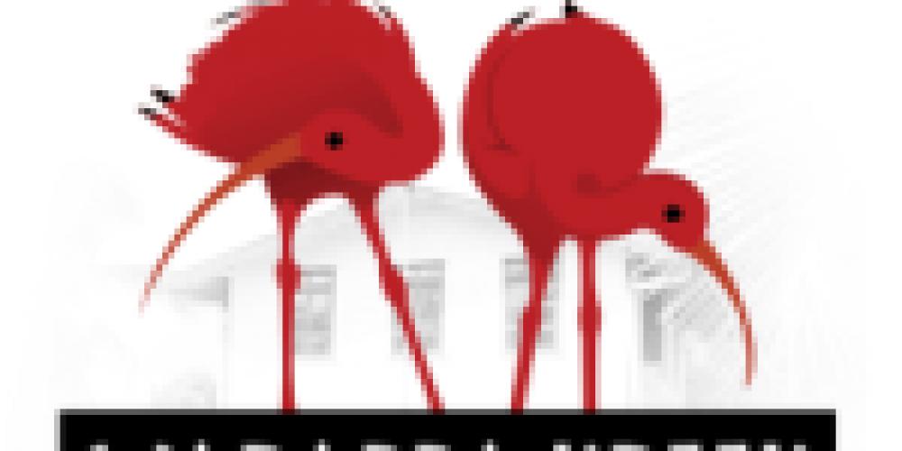 https://surinam.travel/wp-content/uploads/2015/07/flamingosLogo-e1438279802862-150x150.png