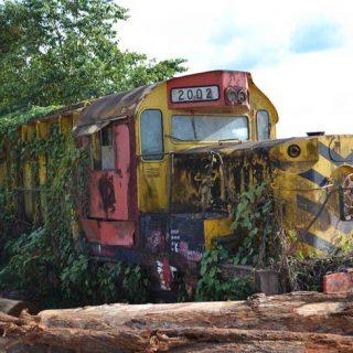 West-Suriname (4-dgn)