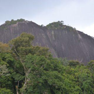 West-Suriname (9-dgn)