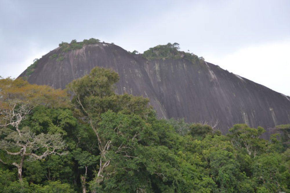 West-Suriname (9-days)