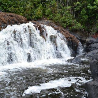West-Suriname (6-dgn)