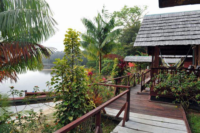 Danpaati River Lodge River/Bos cabin